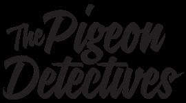 https://blovemusic.com/wp-content/uploads/2020/01/Pigeon-Detectives-Logo.png
